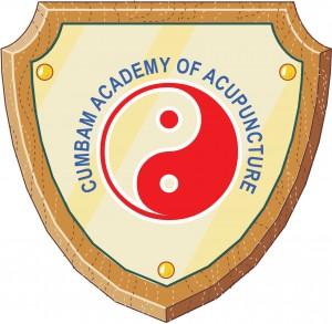 Academy-logo-web